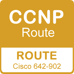 CCNP Routing Training
