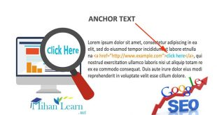 Anchor Text چیست؟