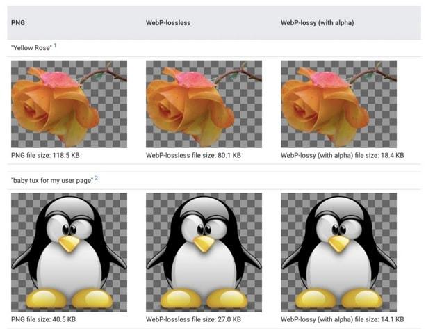 مقایسه فرمت WebP با PNG