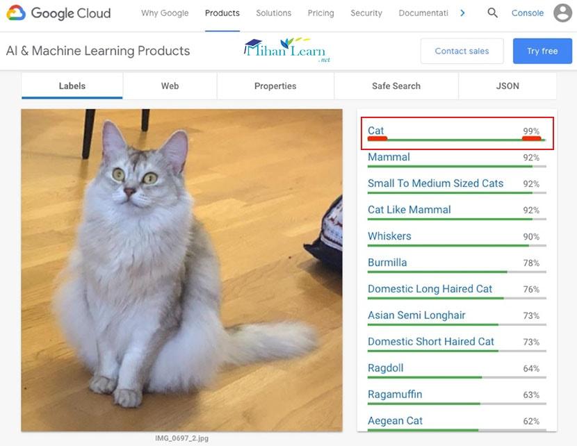 شناسایی تصویر توسط گوگل توسط یادگیری ماشین، اما سئو تصاویر همچنان مهم است